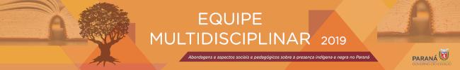 banner ilustrativo da equipe multidisciplinar 2019