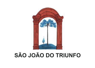 Bandeira do município de São João do Triunfo