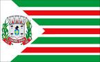 Bandeira de Coronel Vívida