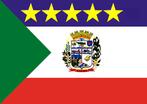 Bandeira do município de Sulina-PR