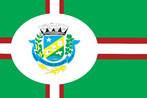 Representada em sinopla (verde), por simbolizar heraldicamente a juventude, a esperança, a alegria, a fertilidade do solo, bem como os campos verdejantes que constituem a esperança sempre renovada e a alegria do povo. As faixas que esquartejam a bandeira, formam uma cruz que representam o topônimo da cidade. As faixetas extremas que compõem esta cruz são goles (vermelho), uma homenagem ao fundador do Município, goles por ser o esmalte representativo da audácia, da altivez e da glória. Símbolo de dedicação, amor pátrio, intrepidez, coragem, valentia, entusiasmo, vida e força. Qualidades estas, dignas de seu fundador Sr. Antonio Villas Boas, que jamais trepidou em afrontar as asperezas da luta para dar melhores condições ao povo de seu Município. A parte central da faixa é branca, simbolizando a paz, a pureza, a religiosidade e o espírito de ordem e trabalho de seu povo. No ponto de intersecção das faixas, está o centro de um círculo que se funde com as faixetas brancas da bandeira. O círculo branco é o símbolo heráldico da eternidade, porque se trata de uma figura geométrica que não tem princípio nem fim, e na bandeira representa ainda a própria cidade sede do município. No  centro deste círculo se insere o Brasão de Armas.