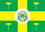 Bandeira do município de Jaguariaíva