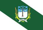 Bandeira do município de Mallet-PR