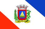 Bandeira do município de Marilândia do Sul