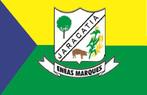 Bandeira do município de Enéas Marques