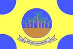 Bandeira do município de São José das Palmeiras