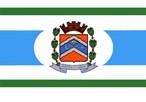 Bandeira do município de São João do Ivaí