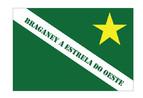 Bandeira do município de Braganey