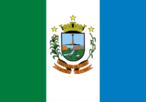 A bandeira de Castro é formada por três faixas verticais, em verde, branco e azul, as cores oficiais do município. O verde representa a agricultura municipal, o branco é o símbolo da paz, e o azul simboliza a pureza de sentimento e a elevação do homem para Deus, além de representar o rio Iapó, que cruza a cidade. Na faixa central, branca, está colocado o escudo de Castro.