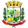 Brasão do município de Presidente Castelo Branco