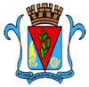 Brasão do município de Tuneiras do Oeste